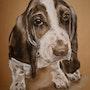 Holzkohle, Hund Basset. Philippe Flohic