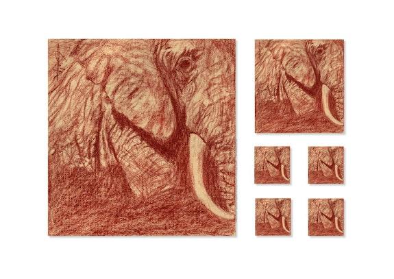 Blood, African Elephant (Kenya). Philippe Flohic Philippe Flohic