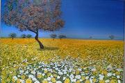 Mallorca en la primavera.