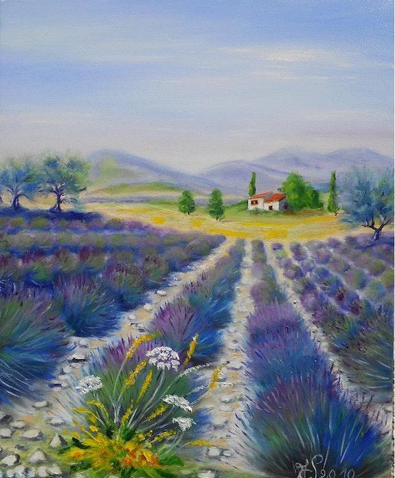Lavender. Marie-Claude Lempereur-Laurent Marie-Claude