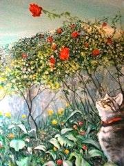 Chat au jardin.