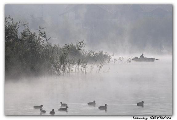 Morning lake.  C. Deniz Seyran
