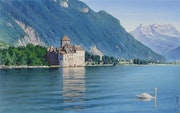 The swan and the Castle of Chillon.