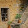 Cactus en las escaleras de la Toscana. Sandrine Jaccod