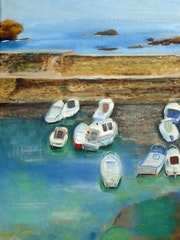 The boats of the old port has biarritz.