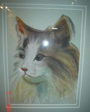 The cat pastel on paper.