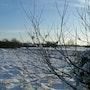 Derrière chez moi -l'hiver 1. Fred#29