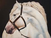 El caballo blanco.