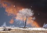 Landscape fantasmagorique2. Max Parisot Du Lyaumont