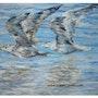 Las gaviotas, los vuelos en la imagen azul, original (únicas). Viktor Schmygarjew