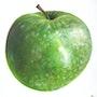 Ein grüner Apfel. Diana. K