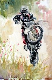 Mx motocross.