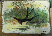 Swallow over a pond. Patrick Heuse
