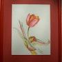 Niederländischen Tulip. Anne Delpierre