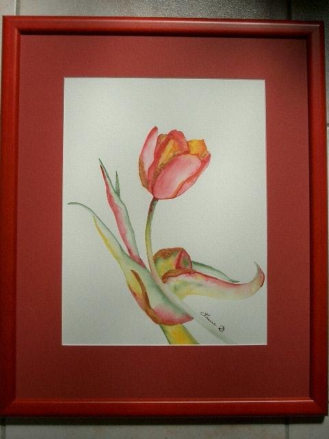 Tulipe hollandaise. Anne D. Anne Delpierre