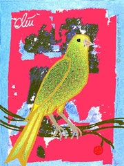 Canarie Bird - limited original graphic - Jacqueline_Ditt.