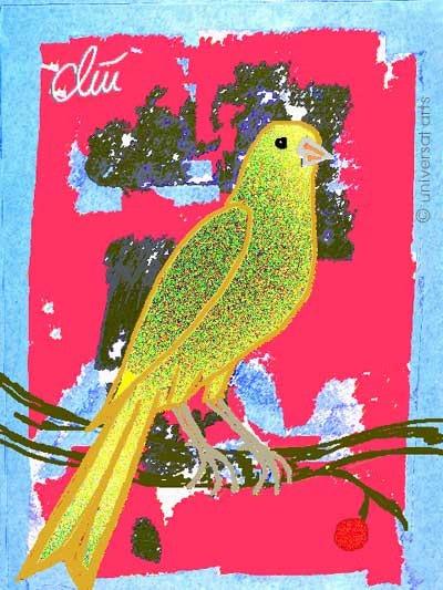 Canarie Bird - limited original graphic - Jacqueline_Ditt. Jacqueline Ditt Universal Arts Galerie Studio Gmbh