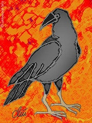 Raven - limited original graphic - Jacqueline_Ditt.
