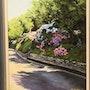 Road hydrangeas. M. Machin