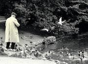 L homme aux oiseaux.