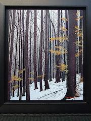 Die Wälder in Kanada.