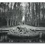 Parque del castillo de Versalles Invierno 1959. Gilles Bizé
