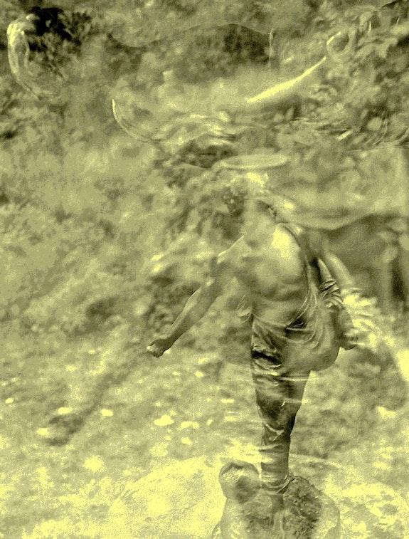 Le Semeur. Elie 2010 Elie