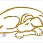 Dog Gold - limited original graphic - Jacqueline_Ditt. Universal Arts Galerie Studio Gmbh