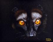 Lémur.