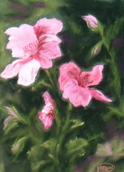 """Drawing-painting pastels """"in the Garden"""". Jacqueline Joron"""