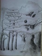 Sous Bois - Under Wood.