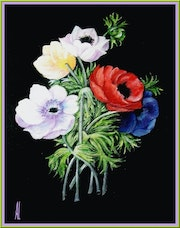 Anemones (55 euros port available).