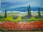 Large fields of poppies in Var hinterland.