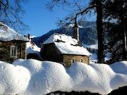 Beauté neigeuse.