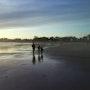 Quand la mer se retire…. Cecile Seuret