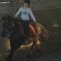 Fusion 03 Pferdesport. Elie
