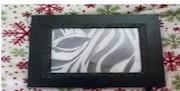 Das Auge des Zebra. Caitlyn Pratt