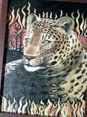 Bedrohter Leopard. Sammy