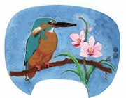 Fan Kingfisher.