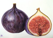 A ripe fig.