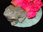 Patinated terra cotta frog on his lily pad.