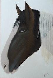 Horse blue eyes.