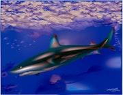 «Shark» Digital painting on Canvas.