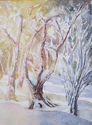 Coucher de soleil sur arbres enneigés.
