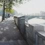 Les Bouquinistes, le Pont Notre-dame, et l'Hôtel-Dieu. Thierry Duval