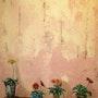 Le long d'un mur,. Martine Moricet