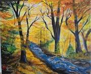Forêt et son ruisseau en automne.