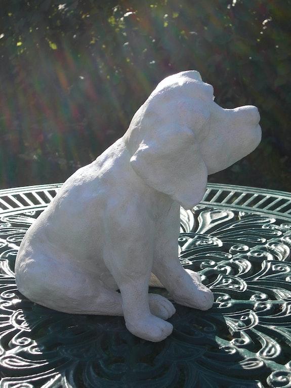 Chiot beagle: je m'appelle Folie!. Michèle Valdre Kromer Michèle Valdre-Kromer