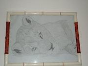 Lionceau. Jessica Dalmasso