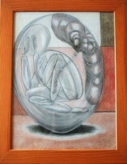 Cocon. Marie-Christine Meicher